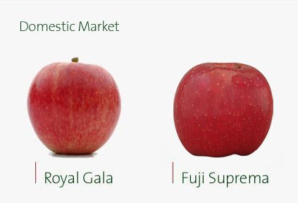 Gala vs Fuji
