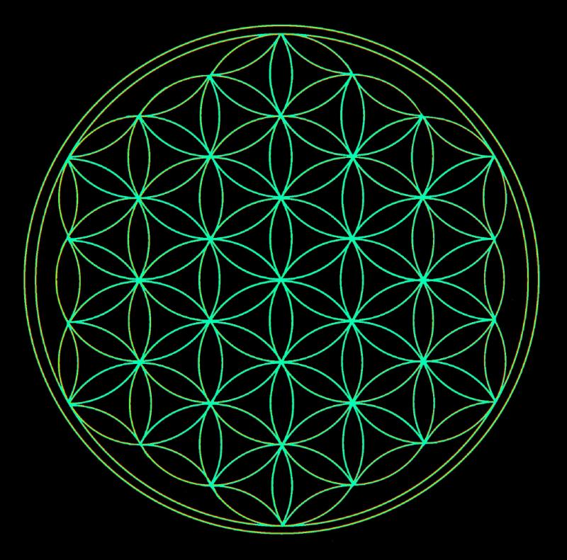The Flower of Life... Leonardo da Vinci studied Sacred Geometry extensively