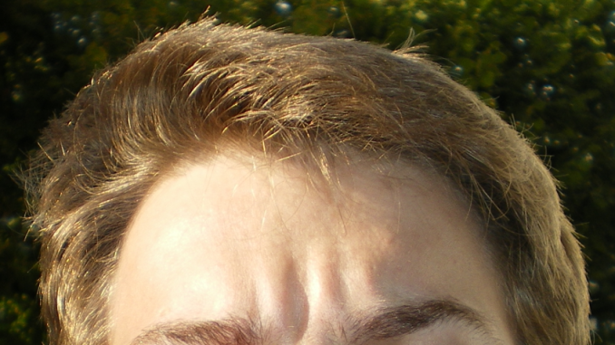 https://commons.wikimedia.org/wiki/File:HairColor.png