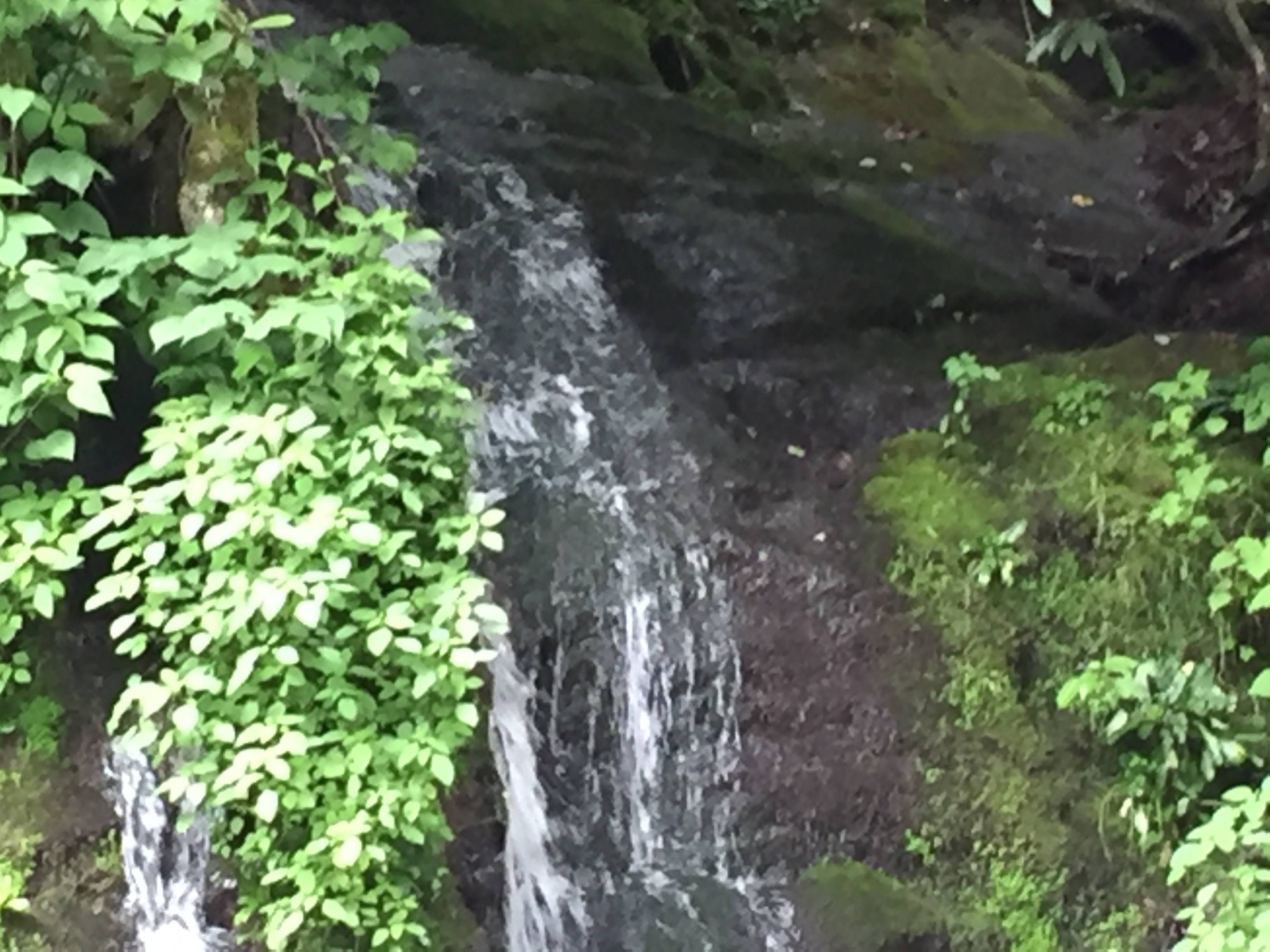 Cataract Falls at the Great Smoky Mountains National Park.  Photo taken by and the property of FourWalls.