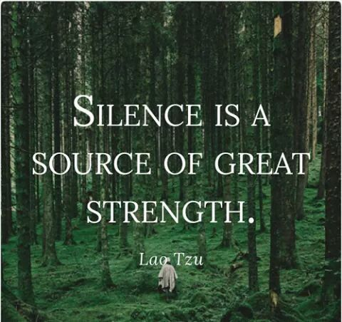 http://www.lovethispic.com/image/305073/lao-tzu-on-silence
