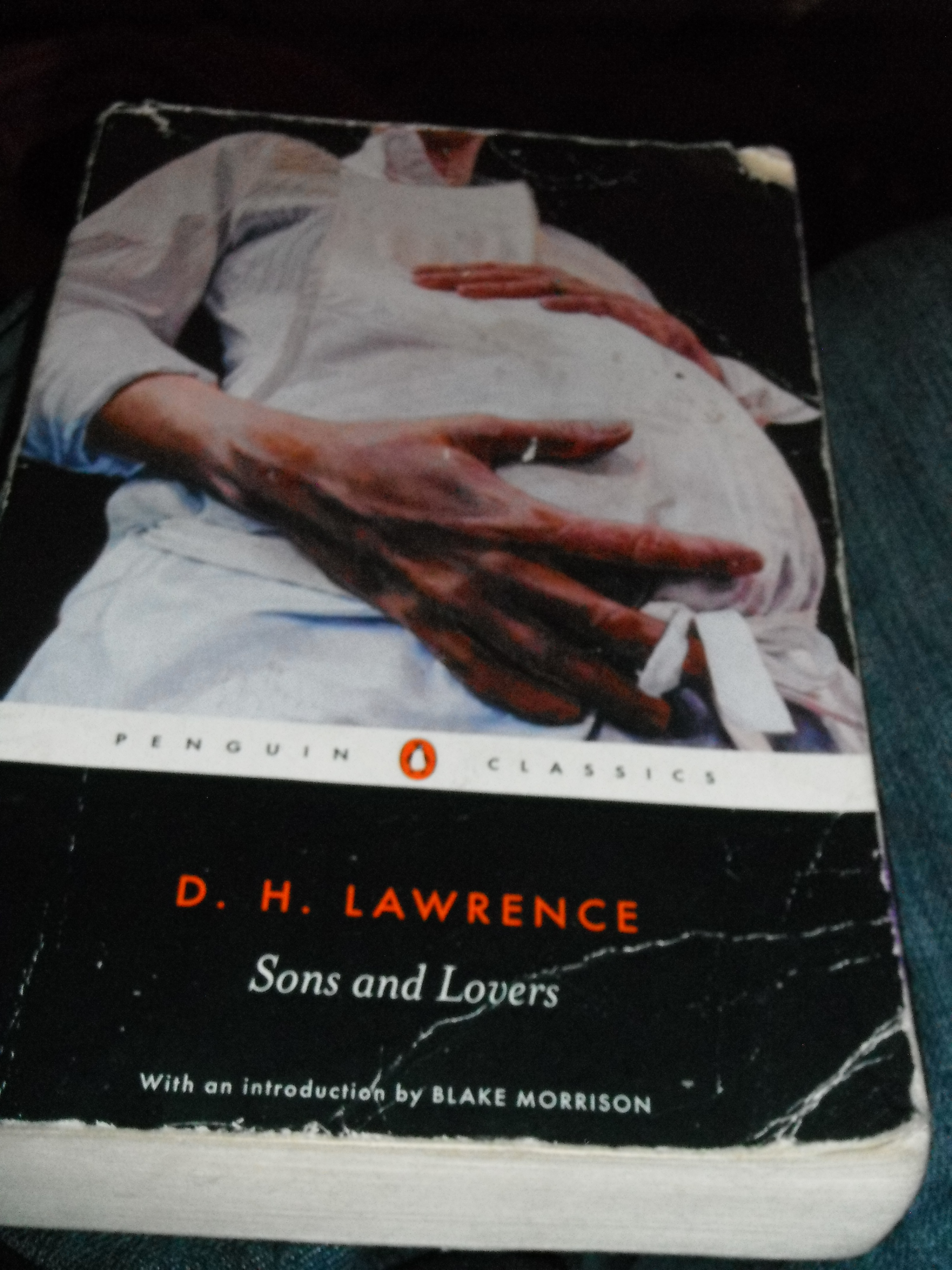 Photo taken by me – The book's cover.