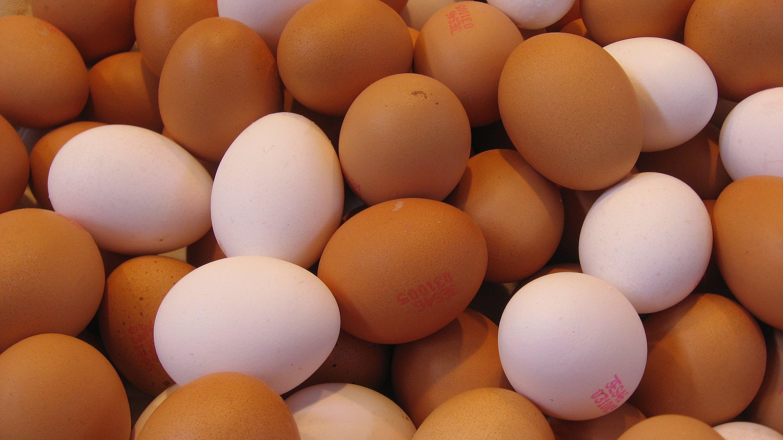 https://commons.wikimedia.org/wiki/File:Egg_texture_169clue.jpg