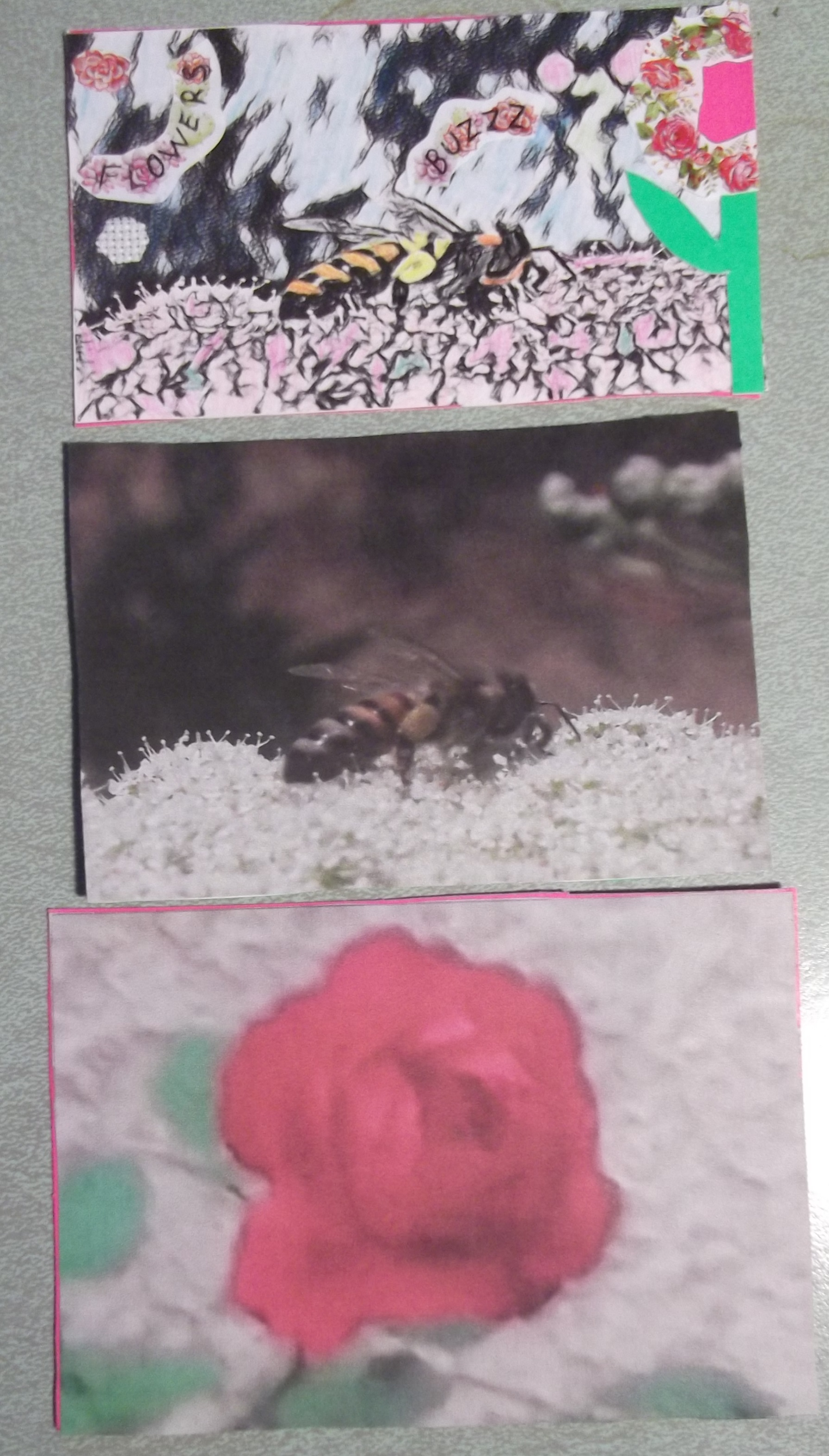 Photo I took of three Artist trading cards I made today
