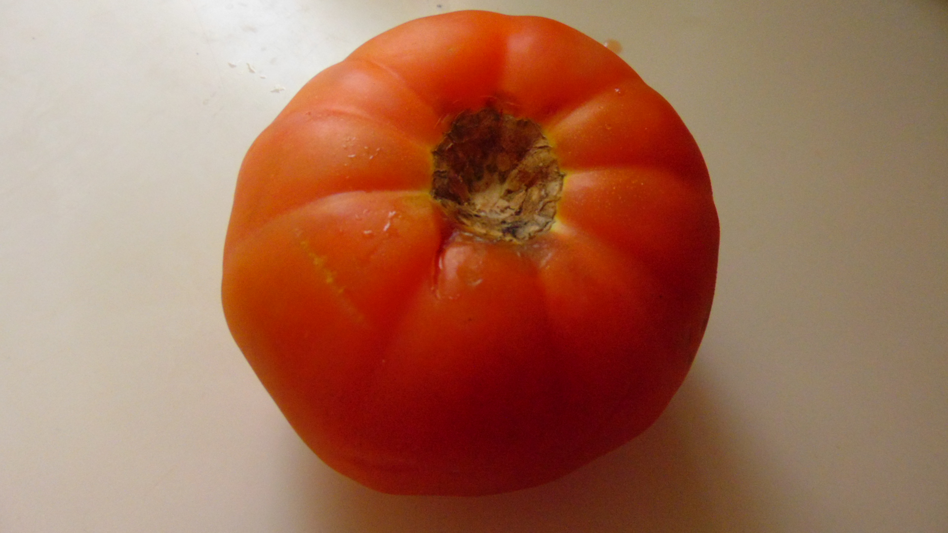 A big tomato from our garden.
