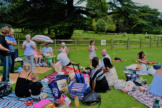 Picnic in the Park August 2017