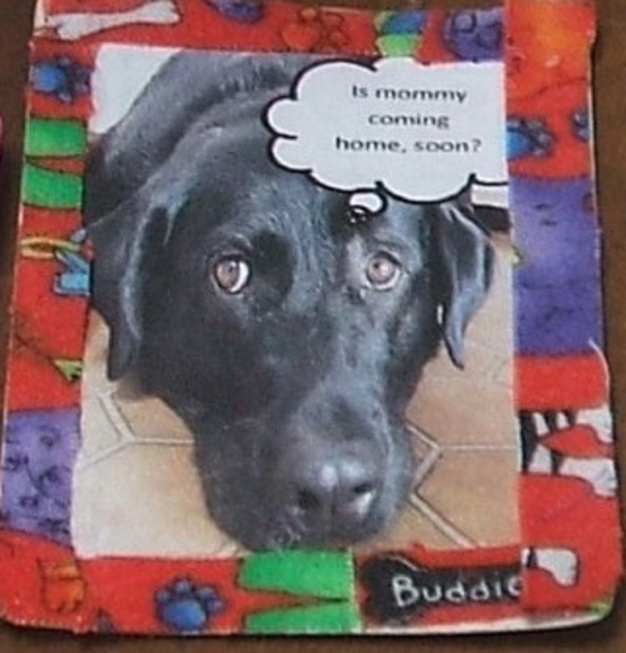 Artist trading card I made with photo of my dog Angel