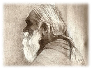 """wise old sage"" http://1.bp.blogspot.com/_iJN5A1i_jDo/Ss9OiCoXgcI/AAAAAAAAA1E/a2avvvFtYO0/s320/Wise-old-sage.jpg"