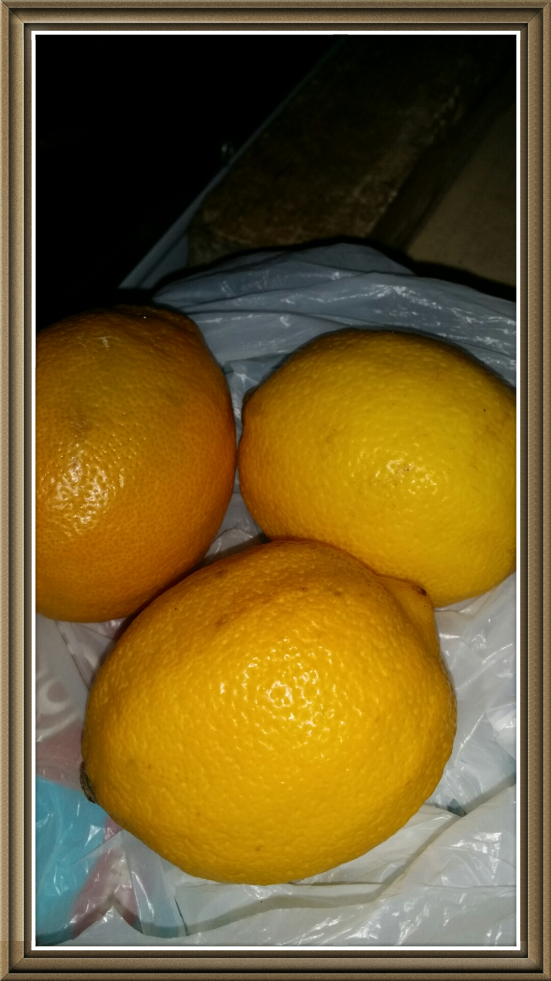 the 3 lemon fruits that my sister bought.