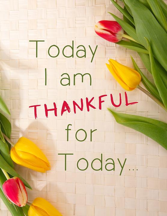 #MyLot #GratitudeChallenge #Gratitude #Grateful #Thankful #Life