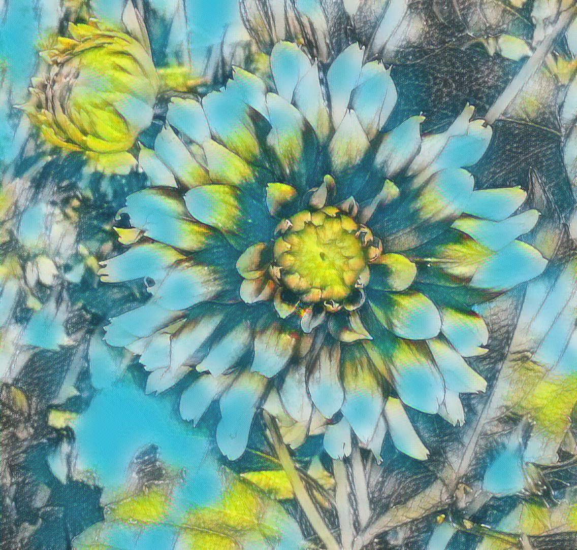 Photo of a dahlia taken by me with Sketch and Fantasy effects on LunaPic.com