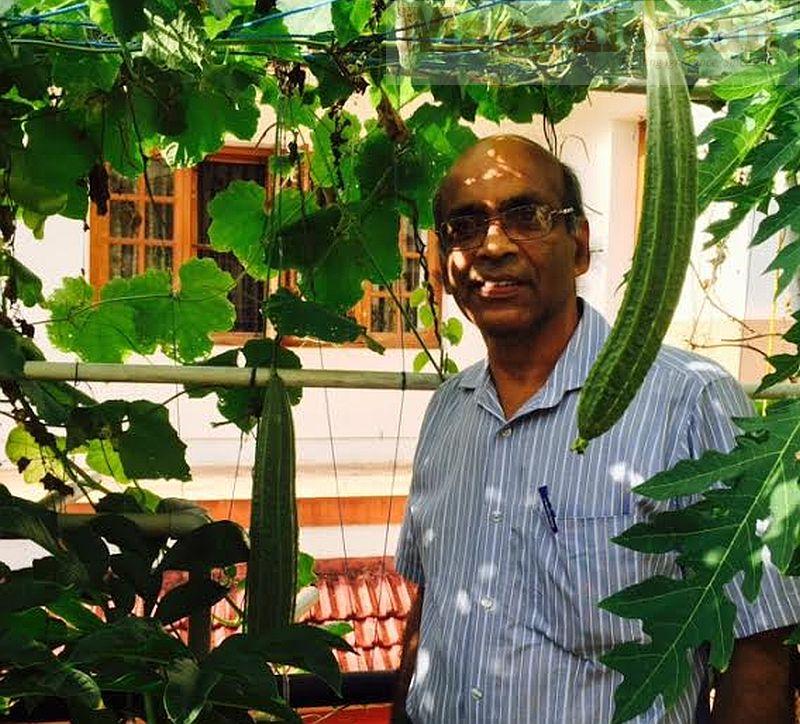 Dr KS Bhat in his terrace garden