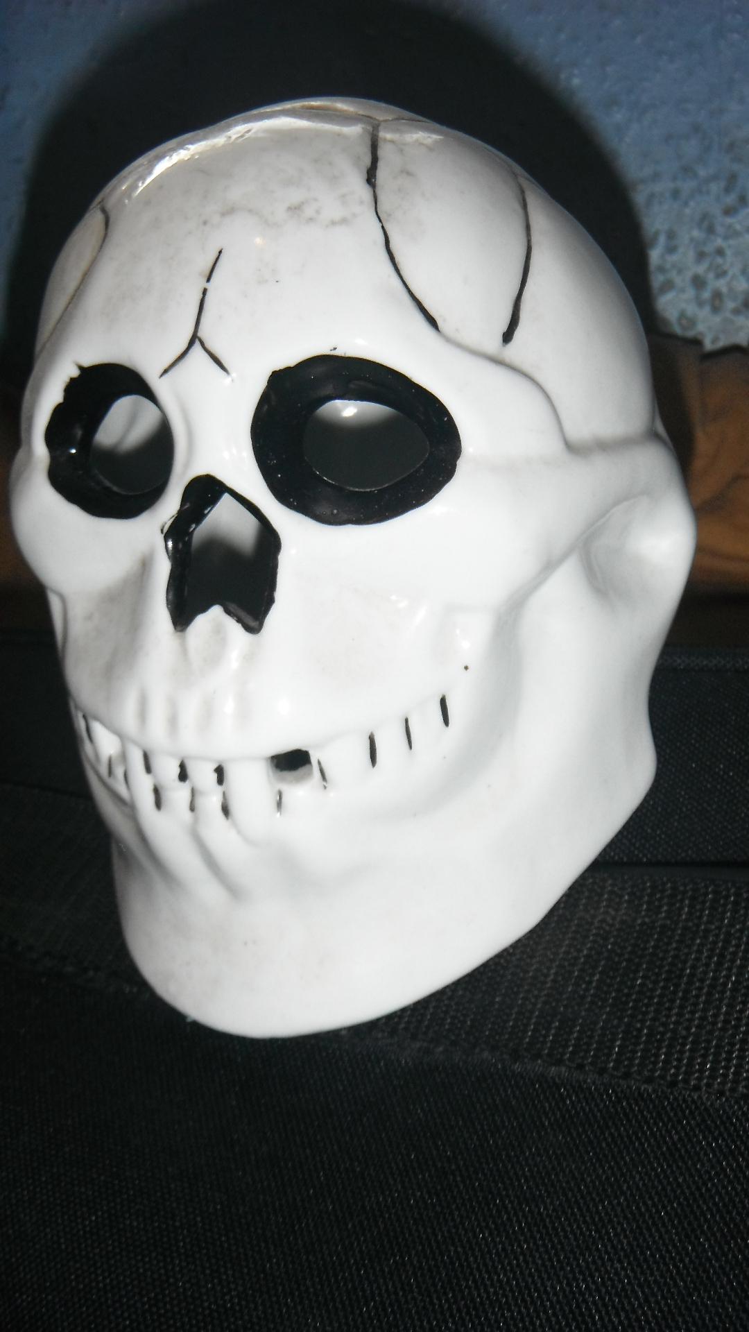 Photo taken by me - horror skull
