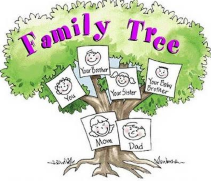 my family tree essay Discover the meaning of the essay name on ancestry find your family's average life expectancy, most common occupation, and more.