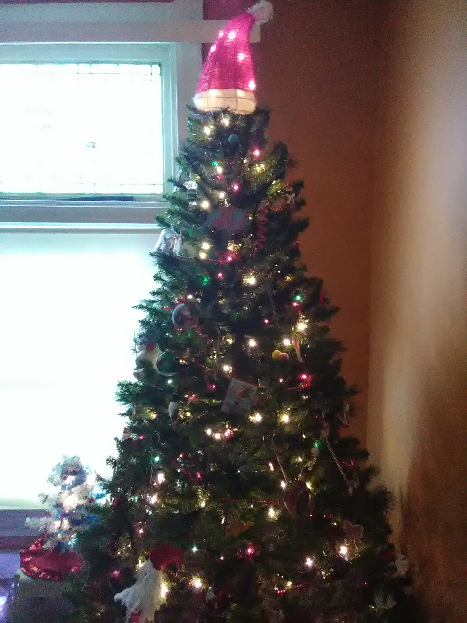 Photo Credit: I snapped and owned this photograph; it's our Christmas tree this year.