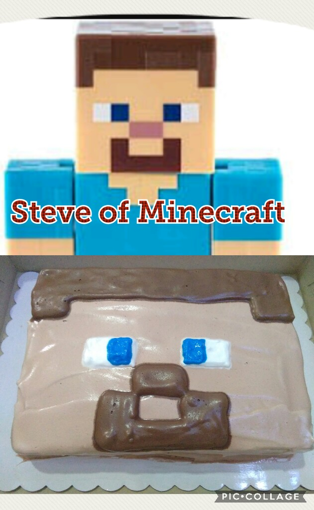 Steve picture from google image, the bottom is my steve cake