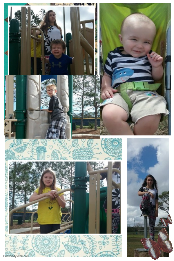 Collage Of Park Fun