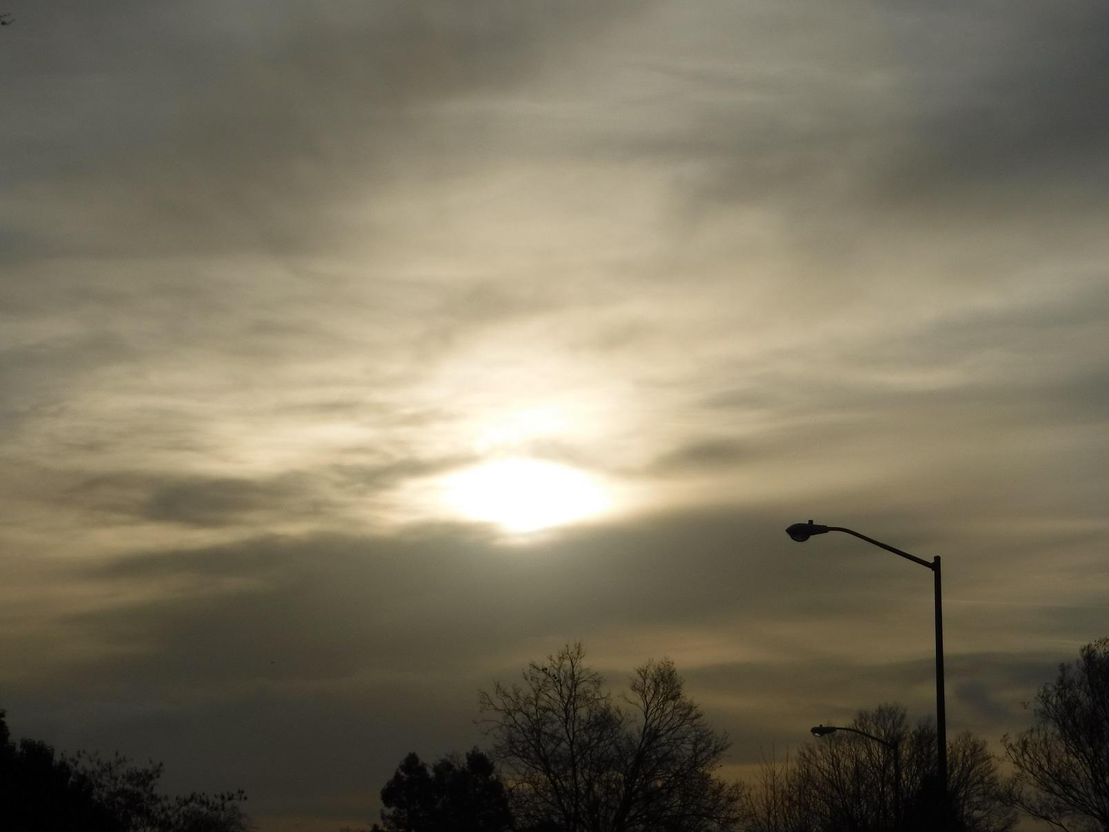 Morning Walk 3-2-18