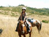 Horse - Horse