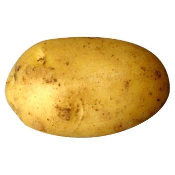 potato - potato = kentang
