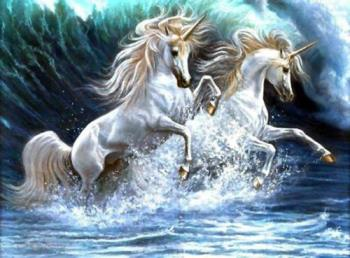 Unicorn Love - Love is never wasted.