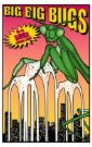 BIG BUGS!!!! - Bugs,bees,nats