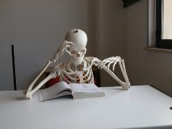 Study - If u study a lot...