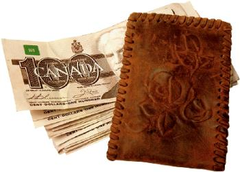 wallet - I lost a wallet, it didn't look like this! but it was still a wallet!