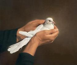 Peace - Peace