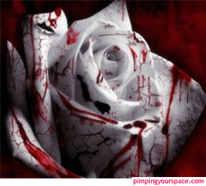 this is a gothic rose - a gothic rose and it fits my personality.