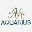 Sign of Aquarius - The sign of Aquarius
