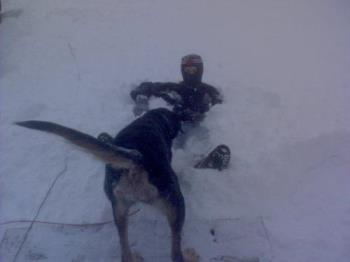 same son with the dog trying to get him in the sno - same son with the dog trying to get him in the snow