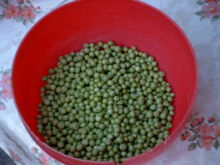 Green Peas - Yucky green vegetable