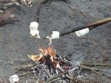 Roasted Marshmellows - Sticky treat for camping