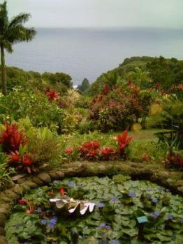 a shooting spot from movie Jurassic Park.......... - Garden of Eden..................................