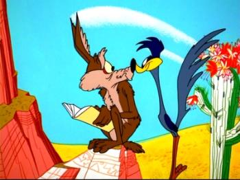 close up - Wile and that stupid roadrunner get close