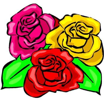 Roses - roses for you on mother's day.