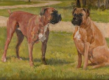 2 Boxers - I love boxer dogs and would love to have many of them with me.