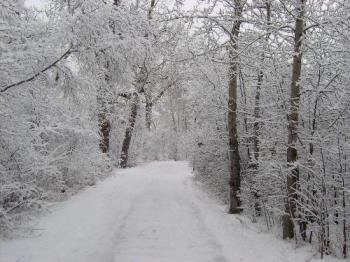 winter run - I live for runs like this....