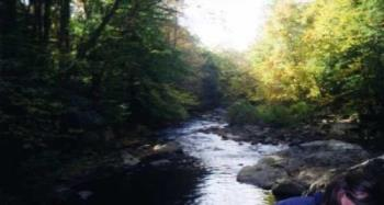 Ohiopyle - One of the streams at a state park