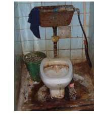 toilet - toilet