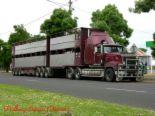 Mack Trailer Truck - image of a 16-wheel Mack Trailer Truck loaded.
