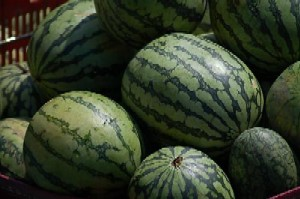 Watermelon - Fruit called pakwan in the Philippines.