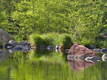 A peaceful scene - This lakeside scene will help to calm you and see hope for the future.