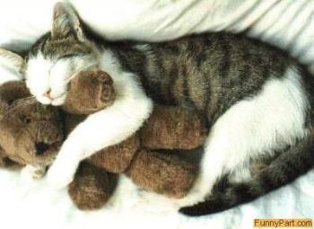 hug - i need a hug!