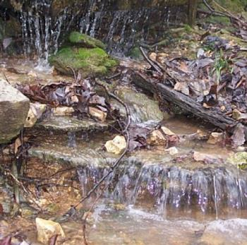 Natural Spring in Arkansas - This photo is of a natural spring fed waterfall in Northwestern Arkansas....I love the outcroppings of rocks and the sound of the water rippling across the rocks.