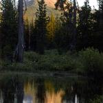 THE GREAT OUTDOORS - outdoors in Oregon