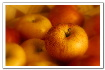 Gala apples - Apples good for people on diet...