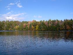 pic i took - this is were i go fishing some time its so pretty there