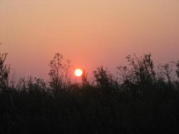 sunset - a picture of a sunset